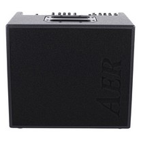 AER Domino 2.A Combo 120W Acoustic
