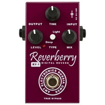 AMT Electronics RY-1 Reverberry Reverb