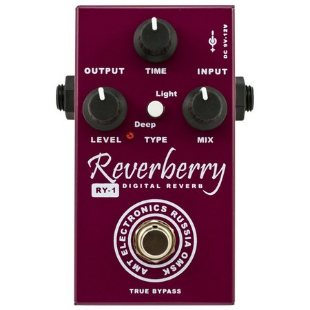AMT Electronics RY-1 Reverberry Reverb