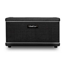 Bad Cat The Paw Combo 60W Guitar Tube